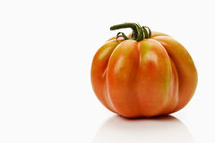 One ox heart tomato on white background Royalty Free Stock Photos