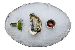One oyster on ice Stock Photo