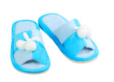Domestic blue slippers Stock Image