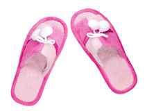 Domestic blue slippers Stock Images