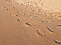 One pair of footprints on wet sand beach. Walking toward viewer Royalty Free Stock Photography
