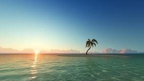 One palm tree on sunset island 3D render. One palm tree on sunset sand island 3D render Royalty Free Stock Photo