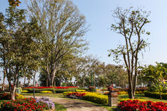 One part of beautiful formal garden. With blue sky Royalty Free Stock Photography