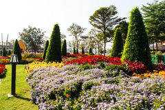 One part of beautiful formal garden. With blue sky Royalty Free Stock Photos
