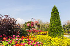 One part of beautiful formal garden. With blue sky Royalty Free Stock Images