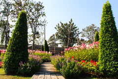 One part of beautiful formal garden. With blue sky Royalty Free Stock Image