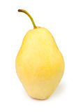 One pear Royalty Free Stock Images
