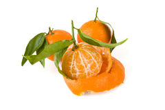 One peeled tangerine and two with a peel Royalty Free Stock Image