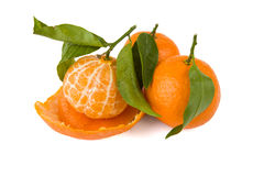 One peeled tangerine and two with a peel Stock Images