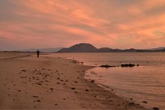 Solitude of a walk along a beach at dawn in Baja, Mexico. One person alone , the solitude of a walk along a beach at dawn on the Bay of California, also known as Stock Photo