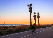 One person ride on bike. Nest to the beac and sunset Royalty Free Stock Photography