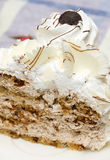 One Piece of Cake with White Whipped. Cream and chocolate Royalty Free Stock Photo
