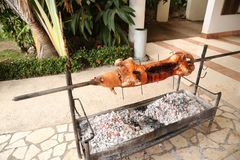 Pig on a spit on the grill, roast pork in the process. One piglet on a spit on the grill, roast pork in the process royalty free stock photos