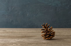 One pine cone close up on wooden table Stock Image