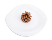 One pine cone on a white plate. Royalty Free Stock Photos