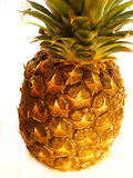 One pineapple closeup. One golden pineapple closeup isolated on white background Stock Photo
