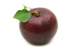 One plum Royalty Free Stock Image