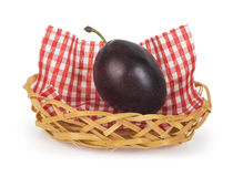 One plum in a basket Stock Images