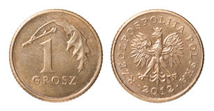 One Polish coin Stock Images