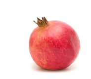 One pomegranate Royalty Free Stock Images