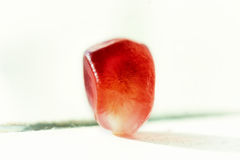 One pomegranate seed Stock Photo