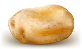 One potato Royalty Free Stock Images