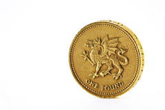 One pound coin. Stock Photography