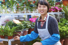 One Pretty Young Asian Florist Working in the Garden. One Beautiful Chinese Woman Working in the Florist`s Smile at Camera Stock Photography