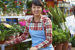 One Pretty Young Asian Florist Working in the Garden. One Beautiful Chinese Woman Working in the Florist`s Smile at Camera Stock Photo