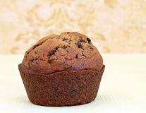 One Pumpin Chocolate Chip Muffin Macro Royalty Free Stock Photo