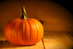 One pumpkin Royalty Free Stock Photography