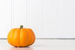One Pumpkin Stock Image