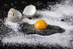 One quail egg broken into flour Stock Photography