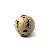 One quail eggs white isolated. One quail eggs isolated on white background Stock Images