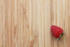 One raspberry Royalty Free Stock Photos