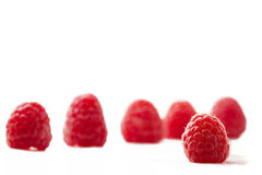 One raspberry with five. One raspberry in front of five isolated on white background royalty free stock photo