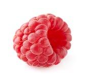 One raspberry Stock Photo