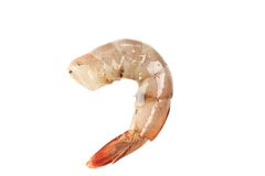 One raw shrimp. Royalty Free Stock Photography