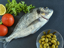 One ready to cook raw bream fish with vegetables on stone slate. Board. Top view Royalty Free Stock Images