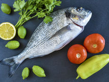 One ready to cook raw bream fish with vegetables on stone slate. Board. Top view Stock Photo