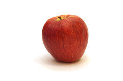 One red  apple Stock Image