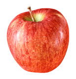 One red apple on isolated background Stock Images