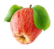 One red apple isolated Stock Photo