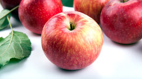 One red apple and leaf Stock Photos