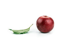 One red apple and leaf Royalty Free Stock Photo