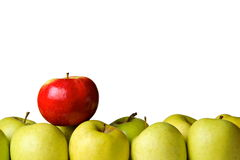 One red apple on yellow apples Stock Image