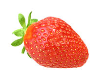 One red berry fresh strawberry Royalty Free Stock Photo