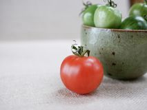 One Red Cherry Tomato royalty free stock images