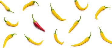 One red chilli pepper among yellow on white background. royalty free stock image