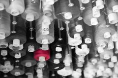 One red cotton bobbin. A collection of black and white cotton bobbins with ne red bobbin Stock Photo